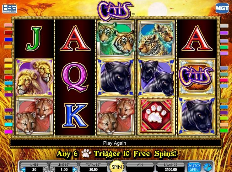 Forgot Password Casino 47300