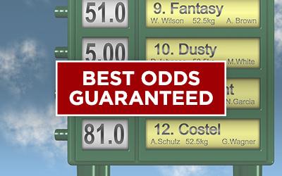Best Online Casino 31485