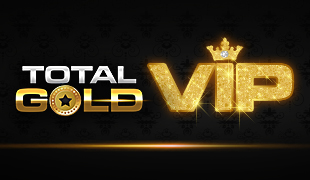 Golden Goal Slot 95451