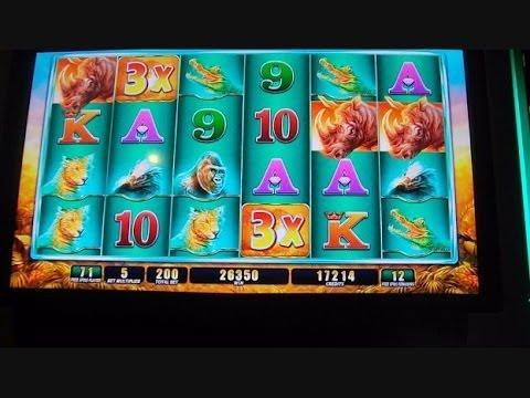 Big Win 91732
